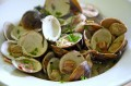 Steamed Clams with Bacon and Cream