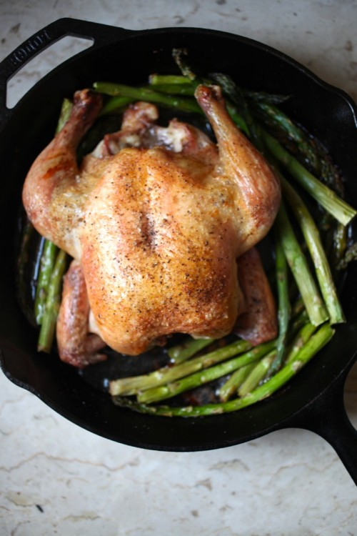 Perfectly Roasted Chicken | Goldilocks Finds Manhattan