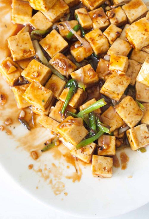 Ginger Scallion Tofu 8 of 8 3 500x733 Tofu with Ginger Scallion Sauce