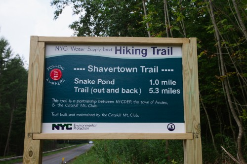 The Shavertown Trial In Andes New York 21 of 21 500x333 The Newly Opened Shavertown Trail in Andes, NY